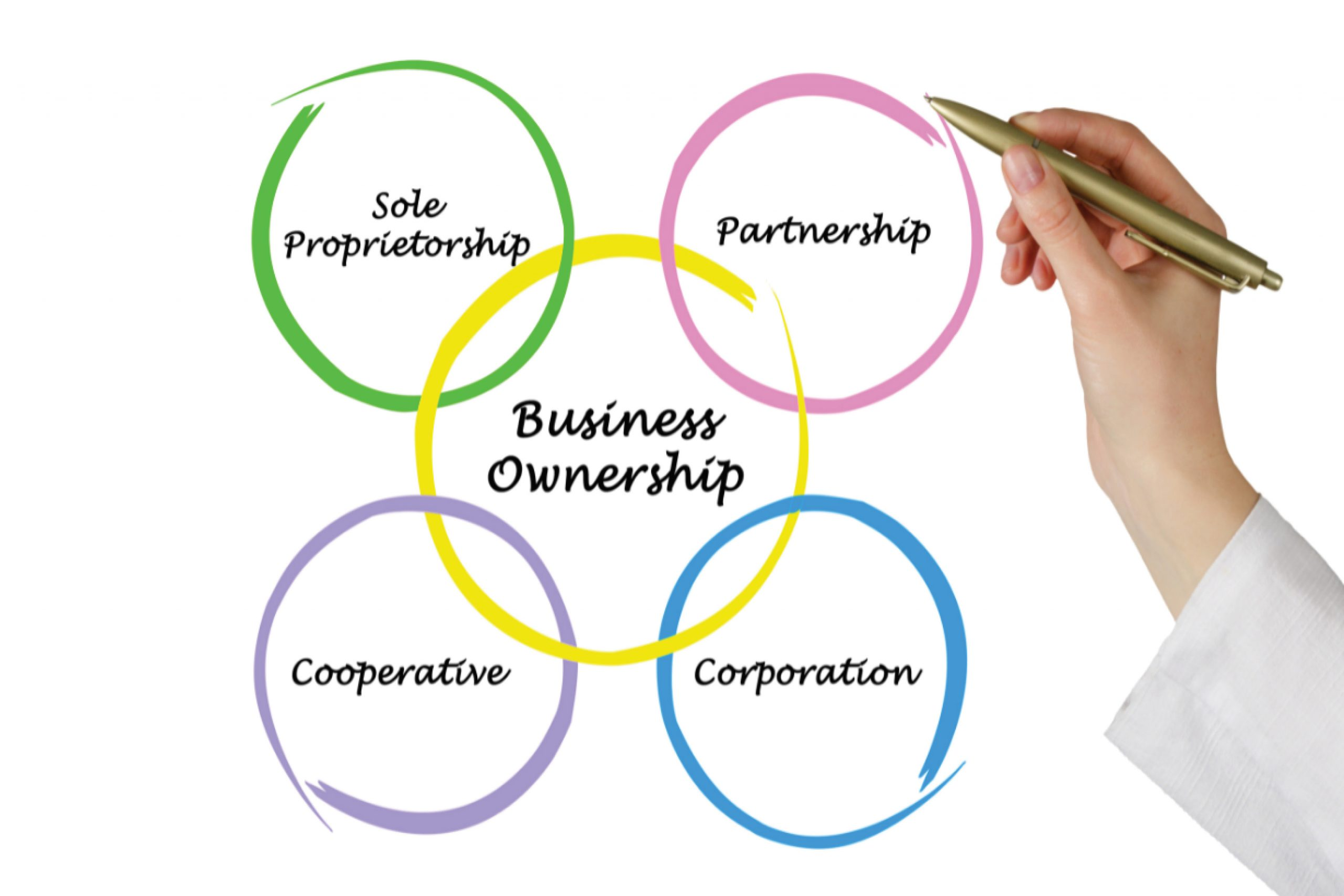 Business Ownership Structure