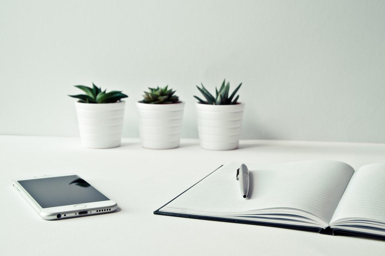 start your business finn group